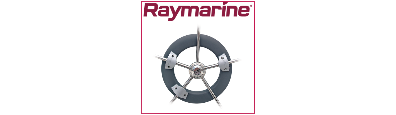 Pilote de cockpit Raymarine